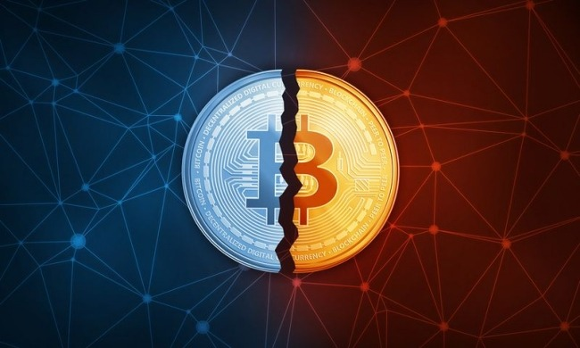 Bitcoin will become a competitor of world currencies in May 2020 - economists say