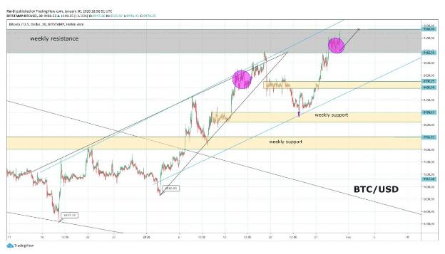 Market overview 31.1| BTC, LTC, ZEC, BCH