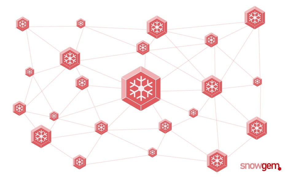 SnowGem comes with its new platform, wallet and credit card support