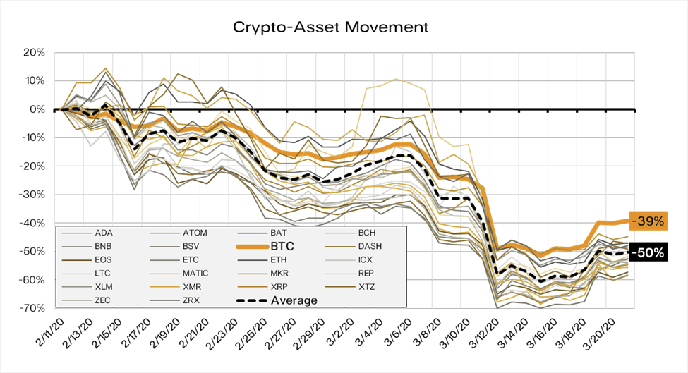 The cryptocurrency expert explains on the chart the riskiness of altcoins