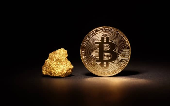 Bitcoin is more risky than gold, but with gigantic potential
