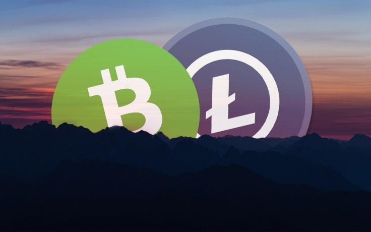 Technical analysis of LTC / USD and BCH / USD - View of drops