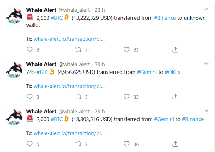 Whale alert: 15 855 BTC moved to anonymous wallet! What do whales plan?