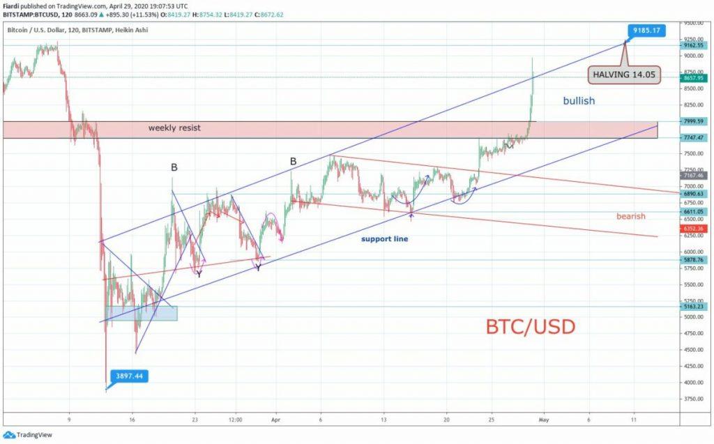 crypto market overview 30.4. BTC