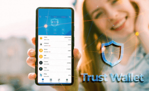 Trust Wallet - settings for Binance Smart Chain + complete guide