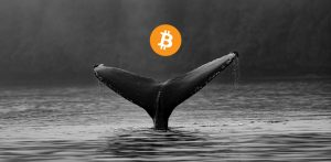 Bitcoin: Whales Still Buying - Crypto Today