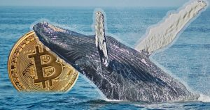 Whales have bought 130,000 BTC in recent weeks