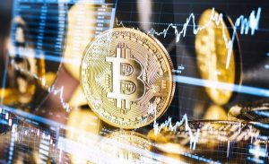 Why should you not (not) be afraid to own Bitcoin