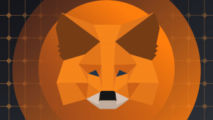 Are we waiting for a new native token of the MetaMask wallet?