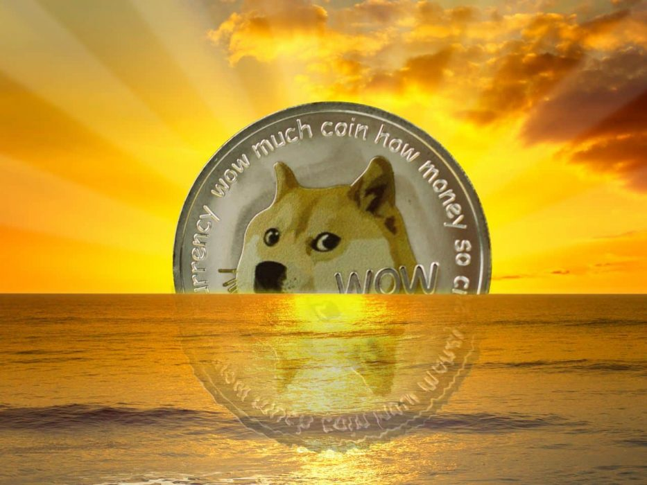 Dogecoin is at the beginning of long growth, the activity of whales is growing