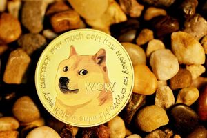 Shiba Inu and all the dogecoin-inspired cryptocurrencies you should know about