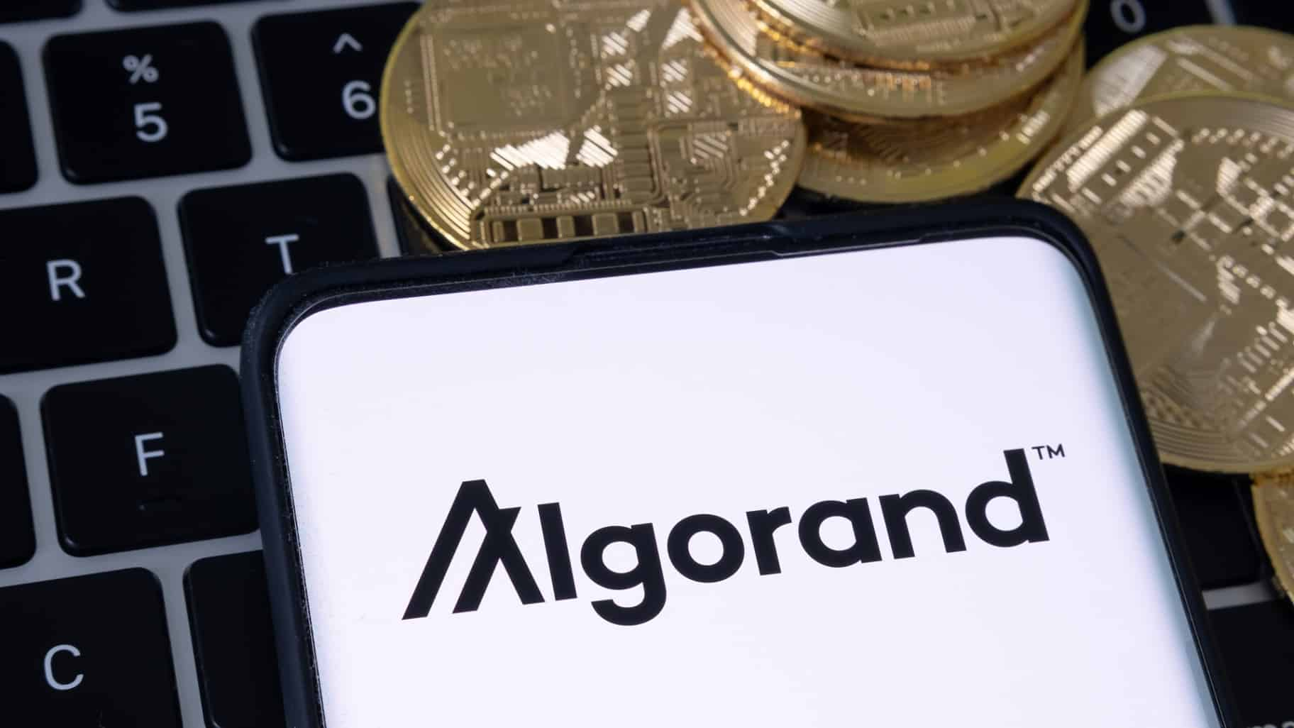 Algorand network receives another 100 million into its fund