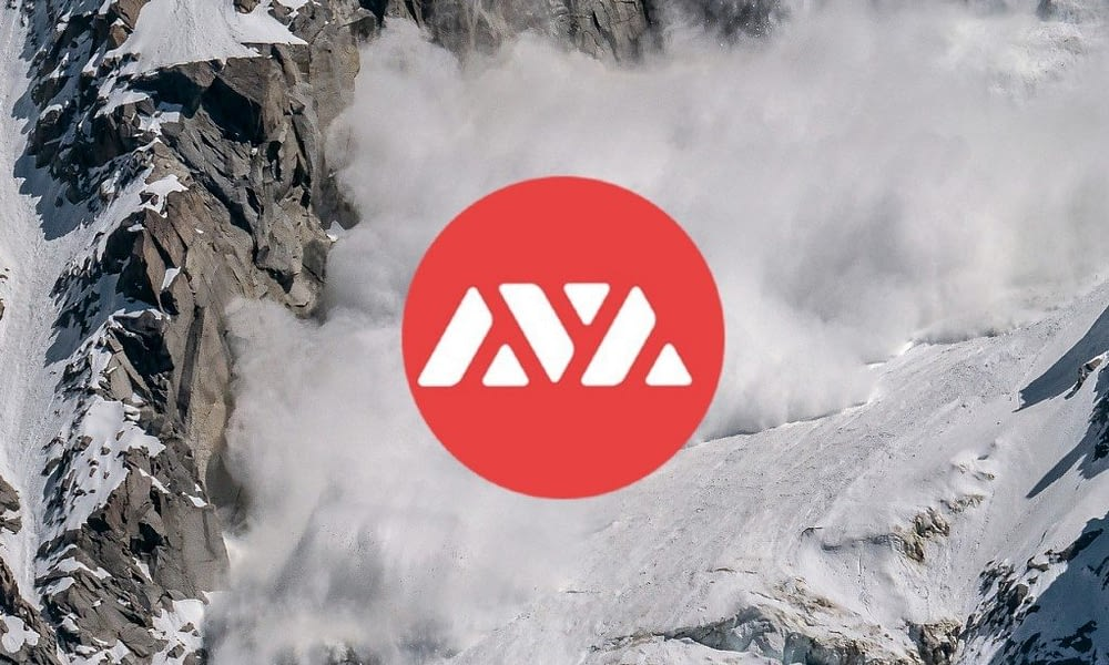 What is Avalanche?